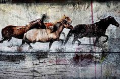 Horses Returning Home by Nordic Art 365
