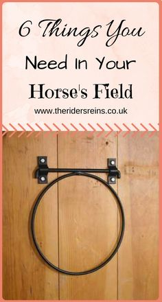 Horse Care Tips   Barn hacks   Barn ideas   Stable hacks   Stable ideas   Equestrian clothing   Horse riding tips   Equestrian bloggers   Horse bloggers   Horse care   stable ideas   Riding tips   horse care tips   stable plans   stable hacks   equestrian fashion   barn hacks   barn ideas   barn plans   pole work   show jumping   horse products   horse tack  