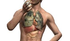 5 Lung-Detoxing Herbs Anyone Who Used to Smoke Needs to Know About