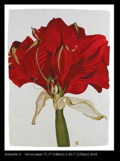 work of Sarah Graham botanical artist Botanical Drawings, Botanical Illustration, Botanical Prints, Sarah Graham Artist, Watercolor And Ink, Watercolor Flowers, Natural Form Artists, Flora Botanica, Plant Painting
