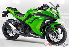 2015-2017 Kawasaki Ninja 1000 ABS O-Ring Chain Green