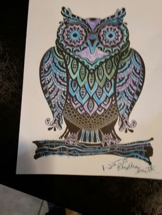 Awesome owl I colored
