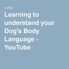 Learning to understand your Dog's Body Language - YouTube