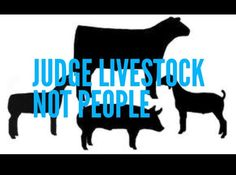 Judge livestock. Not people. FFA. Poster for the AG room??