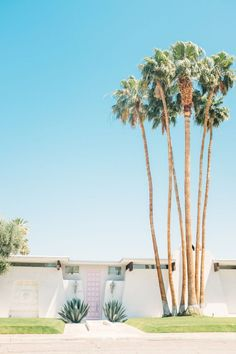 """""""That Pink Door"""" in Palm Springs Palm Springs Houses, Palm Springs Style, Palm Springs California, California Dreamin', Houses In California, Spring Aesthetic, Art Deco, Spring Home, House And Home Magazine"""