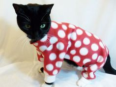 Red and White Polka-dot Fleece Cat Pyjamas | Rockin Dogs and Cool Cats