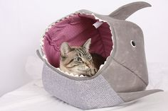 Cat Ball for Shark Week by TheCatBall on EtsyOh no! My cat was eaten by a shark!  cat bed, shark week, pet bed, cat cave  Retro is a lynx point Siamese.