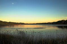 LAKE MERCED Fishing+Lake+Merced+San+Francisco | Lake Merced San Francisco | Flickr - Photo Sharing!