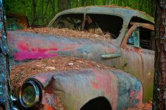 Old Car City, White, GA