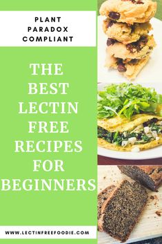 a Lectin Free Diet? A Collection of Recipes to Get You Started Starting a Lectin Free Diet? A Collection of Recipes to Get You StartedStarting a Lectin Free Diet? A Collection of Recipes to Get You Started Lectin Free Foods, Lectin Free Diet, Low Lectin Foods, Clean Eating Snacks, Healthy Snacks, Healthy Eating, Healthy Nutrition, Paleo Diet, Ginger Nutrition