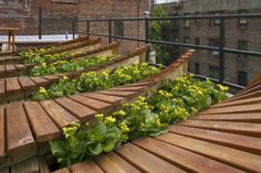 Decking with planting pockets on roof terrace Garden Landscape Design, Green Landscape, Landscape Architecture, Greenwich Village, Green Roof Benefits, Nyc, Rooftop Deck, Garden Sofa, Home Landscaping