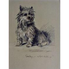 Norfolk Terrier Dog 200LE s//n lithograph art print