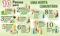 10 passos para uma horta comunitária