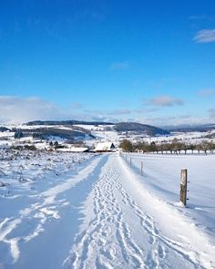 Kleiner Spatziergang durch den Schnee heute Nachmittag. Ich liebe diese weisse Märchenwelt!  Wer von euch war heute auch draussen?  Geniesst den Sonntag Abend!  #winterwonderland #switzerlandwonderland #schneejuhee
