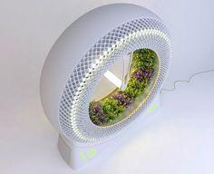Un revolucionario jardín hidropónico para cultivar comida con tecnología de la NASA