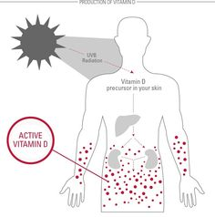 sun cream menual illust - Google 검색