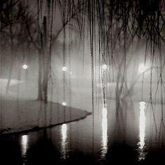 Bill Schwab: Willow Branches, River Rouge, Dearborn, MI, 1999