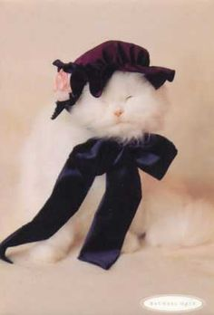 A cat with style and flair!