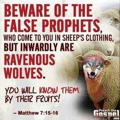 Dog Eats Bible