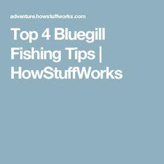 Top 4 Bluegill Fishing Tips | HowStuffWorks