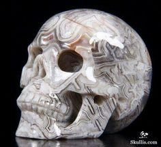 Crazy Lace Agate Skull