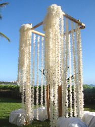 Like this but not so much... It's easy cause you just by leis and tie them together. It would be cute to give each guest a lei, that could even be the favor. We could have McKenna give everyone their lei and greet them when they sign in. Miss Aloha!!!!