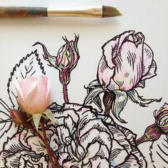 Drawing by Noel Badges Pugh