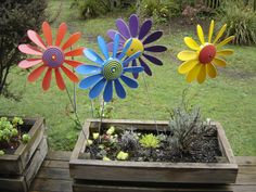 Happy Daisies are plastic garden ornaments that spin in the wind and have been available since Texas Gardening, Garden Ornaments, Windmill, Different Colors, Daisy, Planters, Colours, Spin, Balcony