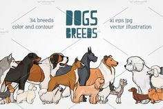 Set of 34 colored and monochrome dog by Good_Studio on Business Brochure, Business Card Logo, Puppy Room, Creative Sketches, Paint Markers, Pencil Illustration, Watercolor And Ink, Painting & Drawing, Free Design