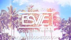 Esvie cosmetics, makeup subscription, windsor makeup, windsor makeup artist, eye palettes