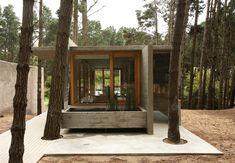 House Among Trees, Mar Azul
