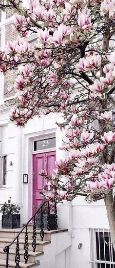 I would love to have a beautiful magnolia tree and that pink front door! Knotting Hill, Belle Photo, Pretty In Pink, Beautiful Places, House Beautiful, Exterior, Flowers Nature, Spring Flowers, Flowers Garden