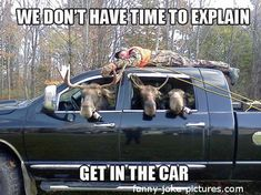 funny moose pictures | Funny Moose Hunting Redneck Justice | Funny Joke Pictures
