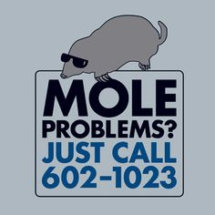 Mole Problems? T-shirt......so it's technically a chem tee, but you can't have science without math!