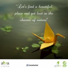 "#Quoteoftheday: ""Let's find a beautiful place and get lost in the charms of nature."" Stay with us and protect ‪#‎environment‬. ‪#‎Nature‬ ‪#‎EcoFriendly‬ ‪#‎InspirationalQuotes‬ ‪#‎Quotes‬ ‪#‎livegreen‬ ‪#‎GoGreen‬ www.amaherbal.com"