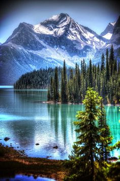 Kingdom of Silence Oxbow - Grand Teton National Park, Wyoming Jasper National Park, Alberta, Canada