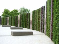 green vertical wall - Buscar con Google