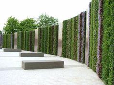 green vertical wall - Buscar con Google
