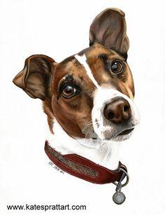 Equine Art & Pet Portraits by Kate Spratt Rat Terriers, Terrier Dogs, Animal Paintings, Animal Drawings, Cute Rats, Jack Russell Terrier, Art Challenge, Dog Portraits, Dog Art