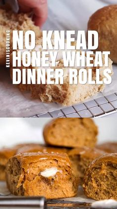 Light and airy No Knead Honey Whole Wheat Dinner Rolls. No mixer required and the honey and wheat flavor is a nice change from the regular white bread roll. Oat Bread Recipe, Honey Oat Bread, No Knead Whole Wheat Bread Recipe, Whole Wheat Bun Recipe, Whole Wheat Biscuits, Easy Baking Recipes, Cooking Recipes, Cooking Videos, Homemade Yeast Rolls