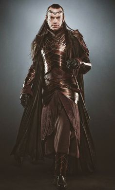 "Elrond (Hugo Weaving), ""The Hobbit"". Look at his armor...Look at it...It's gorgeous!"