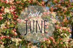 Arrows Blog Post: Dear Month of June