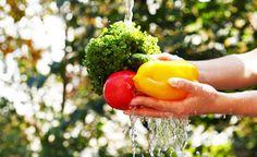 (Zentrum der Gesundheit) - Wenn man Obst und Gemüse aus konventioneller Landwirtschaft kauft, dann kann man fest damit rechnen, das sich darauf Rückstände giftiger Pflanzenschutzmittel (Pestizide, Fungizide) befinden. Doch auch biologische Lebensmittel können mit Umweltgiften aus Abgasen oder auch mit Bakterien belastet sein. Einfaches Waschen hilft oft nicht. Was also tun? Wie wasche ich Obst und Gemüse richtig?