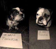 M.                  Hall of Shame | BaggyBulldogs