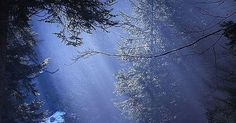 The 30 Most Beautiful Nature Photography | Sunlight, Winter and Beautiful Textures