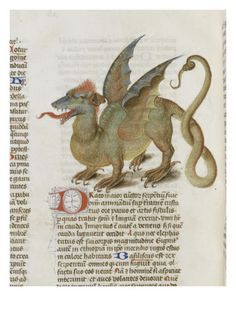 "dragon - Liber Floridus (""book of flowers"") is a medieval encyclopedia that was compiled between 1090 and 1120 by Lambert, Canon of Saint-Omer.[1]the first of the encyclopedias of the High Middle Ages that slowly superseded the work of Isidore of Seville. There is also a copy in the Herzog August Bibliothek, Wolfenbüttel, Germany.Liber floridus includes various maps including a mappa mundi. The Ghent manuscript, being the oldest of the known copies and dating from earlier than 1125."