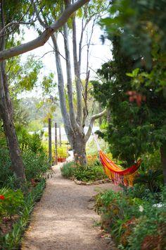 An orange hammock? Yes please.