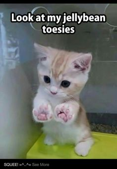 My jellybean toes. Awe
