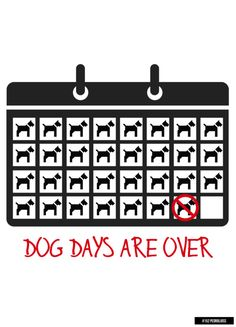 #152 - Dog Days Are Over