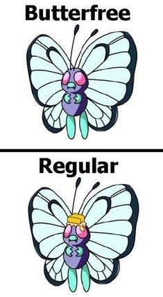 #Punday Butterfree #Pokemon